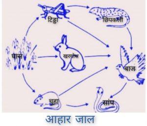 Aahar Jal